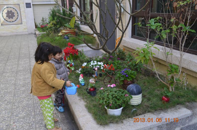 小花圃~~~~